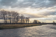 Dusk of a Tree Grove on the River Stock Photography