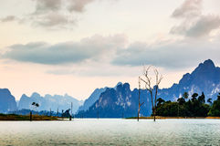 Dusk view, Khao Sok National Park Royalty Free Stock Photo