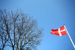 duńska flagę Zdjęcia Royalty Free