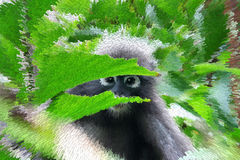 Duskey Langur with the tree. Royalty Free Stock Photography