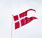 Duński rozłam flaga falowanie na Lekkim tle Zdjęcie Stock