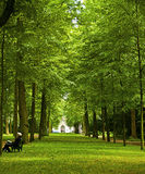 Dusseldorf, Germany  - public park in front of Goethe museum Stock Photos