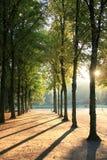 Dusseldorf-Park Stockfotografie
