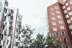 DUSSELDORF TYSKLAND - Juni, 2017: byggnader av det Neuer Zollhof komplexet planlade vid Frank Gehry arkitekter Royaltyfria Foton