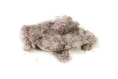 Dust royalty free stock image
