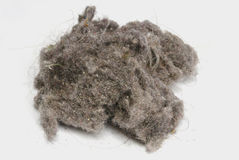 Dust ball big. Dust ball over a white background. House dust can produce allergies. Dust bunny Royalty Free Stock Photo