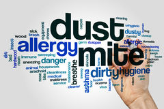 Dust mite word cloud concept on grey background Stock Photography