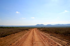 Dust Road to the Kenyan Savannah Royalty Free Stock Photo