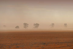 Dust Storm Australian Farm. Dust storm in outback Australia on rural farm with crops in paddock in Mallee Royalty Free Stock Photo
