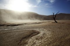 Dust storm in Dooievlei Stock Photography