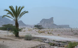 Dust storm in Timna Park, Israel Stock Photography