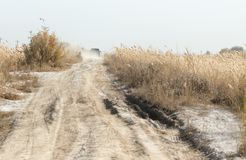 Dust from the SUV on the road with a cane.  Stock Image