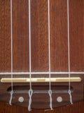 Dusted Ukulele. Dust Covered Ukulele and Strings Stock Images