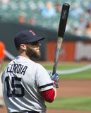 Dustin Pedroia, Boston Rode Sox Royalty-vrije Stock Afbeeldingen