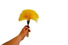 Dusting wand. Yellow duster with static attracting strands of plastic for dusting Royalty Free Stock Photo