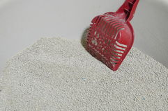 Dustpan on cat litter Stock Image