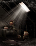 Dusty attic with books Royalty Free Stock Images
