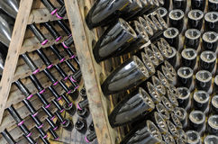 Dusty bottles with brut sparkling wine on wooden rack Stock Photography