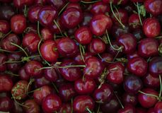 Dusty cherry. Close-up royalty free stock images