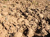 Dusty clay on field. Empty plowed field waits for sowing. Royalty Free Stock Photo
