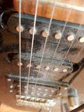 Dusty electric guitar strings Royalty Free Stock Photography