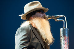 Dusty Hill Stock Photography