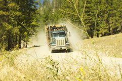Dusty logging truck Royalty Free Stock Images