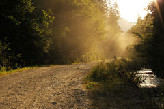 Dusty road. And beautiful sun rays stock photography