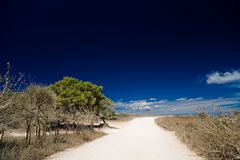 Dusty road. In the countryside on a hot summer day Royalty Free Stock Photography