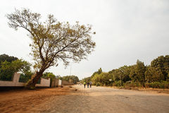 Dusty Road through center of Livingstone Town, Zambia - Africa Royalty Free Stock Images
