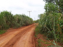 Dusty road in Ghana, Africa Royalty Free Stock Photos