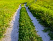 Dusty road through a green field Stock Photo