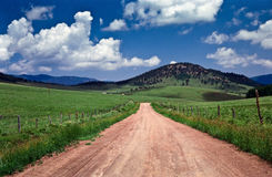 Dusty road through green hilly pasture land Royalty Free Stock Image