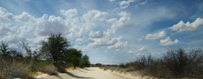 On the dusty road through the Kgalagadi Transfrontier National Park , South Africa. In November, clouds begin to build for the summer rains. The dusty roads run Stock Photo
