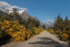 Dusty road in Nahuel Huapi National Park. Argentina Stock Photos