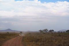 Dusty road od Serengeti Stock Image