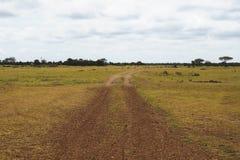 Dusty road od Serengeti Stock Photography