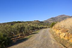Dusty road and olive groves. A dusty road with awire fence beside hillside olive groves with a villa cypress trees and mountains under a blue sky in andalusia Stock Photos