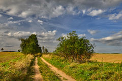 Dusty road. Rural dirt road for a late summer day Stock Photo