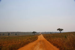 Dusty road in savanna. Dusty road in african savanna landscape, Uganda, Africa Royalty Free Stock Photos