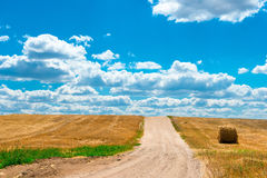 Dusty road in the sloping Field of wheat Royalty Free Stock Images