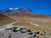 Dusty roads of altiplano Royalty Free Stock Image