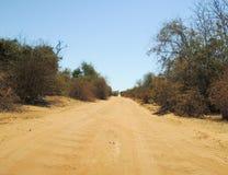 Dusty safari road Stock Image