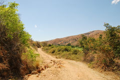 Dusty safari road. In Madagascar royalty free stock photography