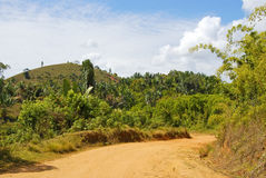 Dusty safari road. In Madagascar stock images