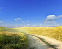Dusty steppe road Stock Image