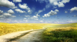 Dusty steppe road Royalty Free Stock Images