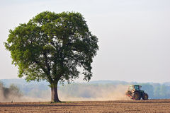 Dusty Tractor Tree. A farmer planting crops in a dry field Stock Photo