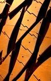Dusty Tyre Tread dans un désert rouge Photos libres de droits