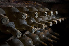 Dusty wine bottles waiting in a cellar. Old wine bottles waiting in a vault Stock Photography